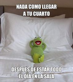 Funny Spanish Jokes, Funny Friday Memes, Spanish Humor, Friday Humor, Monday Memes, Spanish Class, Memes Funny Faces, 9gag Funny, Funny Animal Quotes