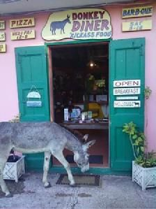 Donkey Diner, East end St. John, USVI - bloody mary's and tofu scramble for breakfast (which we still make at home!)