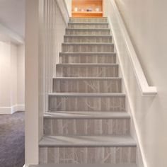 Birch Tree Wallpaper on the stairs