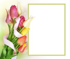 Tulips Transparent PNG Photo Frame