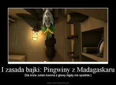 Polish Memes, Cartoons, Jokes, Lol, Humor, Disney, Funny, Madagascar, Cartoon