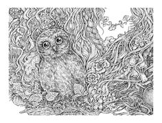 Forest Beauty - Fragment with owl | Eugenia Hauss