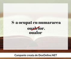 Romanian Language, Grammar, Montessori, Homeschooling, Education, Quotes, Quotations, Onderwijs, Learning