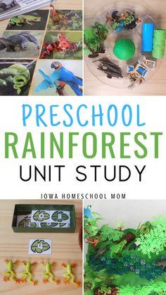 Rainforest activities for preschool. A jungle theme, rainforest unit study for preschoolers that covers science experime Jungle Preschool Themes, Rainforest Preschool, Jungle Activities, Rainforest Theme, Preschool Science, Rainforest Habitat, Rainforest Animals, Montessori Preschool, Science Activities