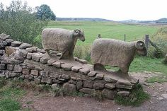Stone sheep alongside the Pennine Way Between Low and High Force in Teesdale by…