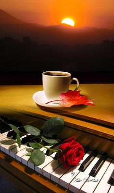 1 million+ Stunning Free Images to Use Anywhere Coffee Latte Art, I Love Coffee, My Coffee, Coffee Cups, Rose Flower Wallpaper, Weekend Images, Miniature Photography, Good Morning Coffee, Good Morning Flowers