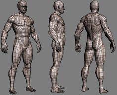 Body 3D diag