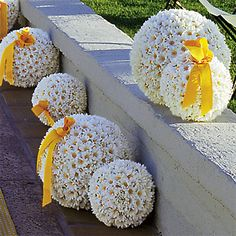 daisy balls for wedding and reception design! Daisy Party, Daisy Wedding, Wedding Bells, Fall Wedding, Wedding Bouquets, Wedding Flowers, Dream Wedding, Wedding Church, Wedding Reception
