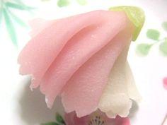 日本人のおやつ♫(^ω^) Japanese Sweets 伝統の和菓子 Wagashi 二條若狭屋の上生菓子「しだれ桜」