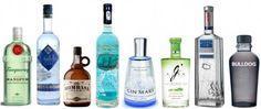 Las ginebras aromatizadas