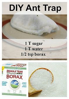 1000 Images About Borax 20 Mule Team On Pinterest
