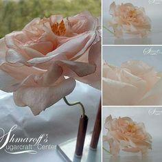 Wafer paper Rose