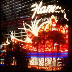The Flamingo at night