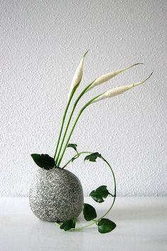 Ikebana 'Creepy crawley' by Otomodachi