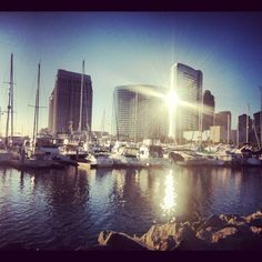 San Diego Summer    ### Family Friendly Things To Do in San Diego