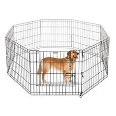 "Pet Trex 24"" Exercise Playpen for Dogs 
