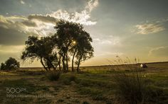 sunset by oerdogmus66. Please Like http://fb.me/go4photos and Follow @go4fotos Thank You. :-)