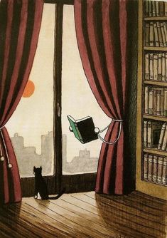 bibliophilefiles:  Even the library curtain gets it.