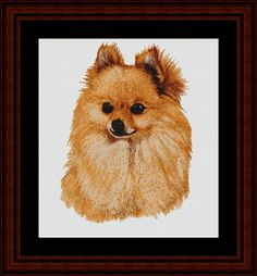 Pomeranian - Cross Stitch Collectibles fine art counted cross stitch pattern