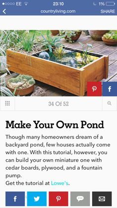 Cedar Boards, Ponds Backyard, Fountain, Canning, Garden, Plants, Garten, Flora, Water Fountains