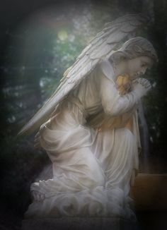 Check out these 6 gorgeous angel images that'll inspire you! Angel Images, Angel Pictures, Engel Illustration, Angel Sightings, Angel Readings, Angel Prayers, I Believe In Angels, Angels Among Us, Real Angels