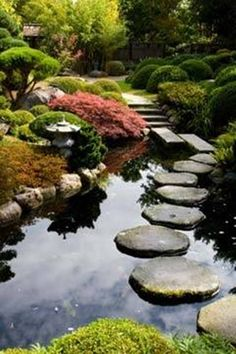 Japanese garden with pond and stepping stones
