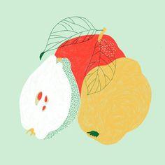 Fruit illustration x color play Fruit Illustration, Food Illustrations, Botanical Illustration, Graphic Illustration, Flowers Wallpaper, Poster Photo, Art Watercolor, Arte Pop, Art Design