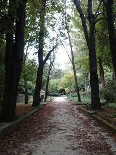 Um dia de outono