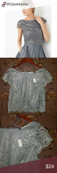 Lace Crop Blouse White House Black Market Lace Crop Blouse with satin accents size 6 New with tags White House Black Market Tops Blouses
