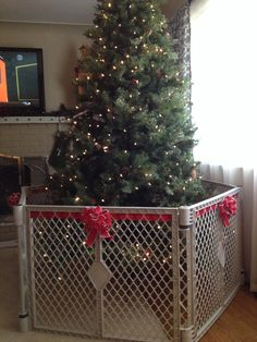 Handmade fence. Dog proofing. Christmas tree saving | the ...