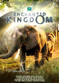 Enchanted Kingdom (2015) | Full HD Documentary Film
