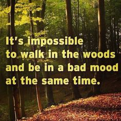 It's impossible to walk in the woods and be in a bad mood at the same time. #truth #woods #outdoors