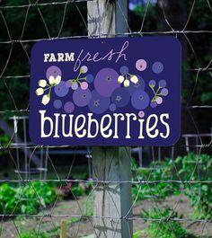 Farm Fresh Blueberries Farm Sign 18X12 by BainbridgeFarmGoods, $34.95
