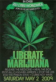 #Marijuana, #ghanja #cannabis #kush #bud #smoke #Buddha #zigzag #bongs #vaporizer #peace #hippy #pipe #weed #medical #sativa #purple #clones #ads #hashish http://hdweedwallpapers.com/ #weedplant #weed