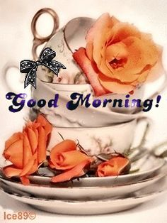 Good Morning my sweet Sister's. Have a wonderful day.You are loved so much by Jesus and by me.Be Blessed my friends.