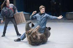 Aspirante a domador é dilacerado por urso em circo de Moscou: ele não o reconheceu por causa da máscara - GreenMe Brasil