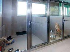 decoracion veterinarias ile ilgili görsel sonucu