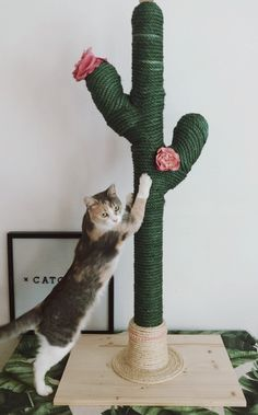 for cats CATCUS Cat Tree Cat Tree Boho Etsy Katzen spielzeug und baum Diy Crafts To Do At Home, Cat Tree Designs, Diy Cat Tower, Cactus Cat, Cactus Plants, Gato Gif, Cat Scratching Post, Cat Room, Buy A Cat
