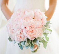 blush pink and dusty miller bouquet | Peonies & Dusty Miller Bouquet