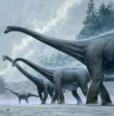 A parade of sauropods by Kazuhiko Sano. ❣Julianne McPeters❣ no pin limits