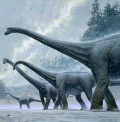 A parade of sauropods from Kazuhiko Sano.