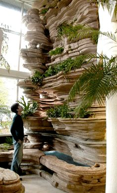 Indoor gardening...I am imagining this with a to bog blooming orchids....I LOVE this!!!!