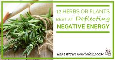 There are specific herbs that have used for a very long time, that have the impact of deflecting and transforming negative energies. This is largely the basis of many therapeutic essential oils. Here are 12 excellent herbs at deflecting negative energy. Find out what they are!