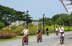 East Coast Park is one of Singapore's most treasured urban getaways, offering a range of activities ranging from sporting, recreational to dining. Garden Park, Nature Reserve, East Coast, Singapore, National Parks, Urban, Activities, Travel, Gardens