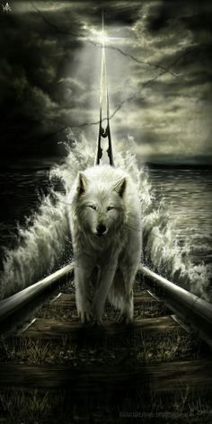 We humans fear the beast within the wolf because we do not understand the beast within ourselves. Wolf Images, Wolf Pictures, Wolf Wallpaper, Animal Wallpaper, Anime Wolf, Beautiful Wolves, Animals Beautiful, Wolf Artwork, Fantasy Wolf