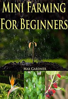 Free Kindle eBook for a limited time - download to your Kindle or Kindle for PC now before the price increases (see http://www.pinterest.com/earthora/free-green-living-kindle-books/ for hundreds more): Mini Farming For Beginners: A Beginners Guide To Becoming Self Sufficient (Backyard Farming – Homesteading – Homesteading Survival – Handbook – Backyard Gardening – Mini Farming – Indoor Gardening)