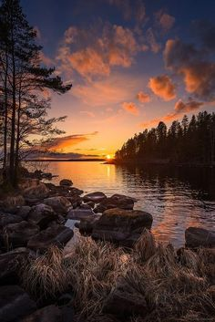 Sunset is the sunset in the afternoon. That time is beautiful scenery. We will present an article about sunset quotes love. Landscape Photos, Landscape Photography, Nature Photography, Sunset Landscape, Forest Landscape, Scenic Photography, Beautiful World, Beautiful Places, Beautiful Pictures