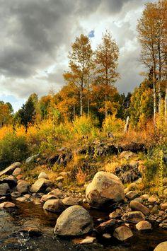 Autumn streambed by kayaksailor.deviantart.com on @deviantART