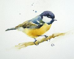 Watercolor Tit Bird - Original Painting 7 4/5 x 7 4/5 inches