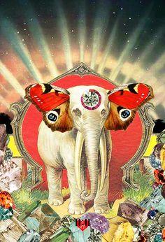 11:11 Enterprises — New Collection Sneak Peek - Magical Elephant